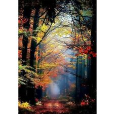 Forest Path 5D Diamond Painting Full Drill Embroidery Home Bedroom Decoration