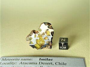 meteorite pallasite IMILAC, Chile, complete endpiece 20,8 g