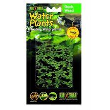 Lenteja de Agua Planta Flotante 15cm de Plástico para Tortugueras y Terrario