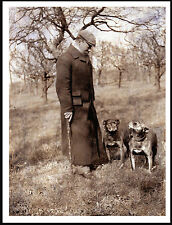STAFFORDSHIRE BULL TERRIER OLD MAN AND DOGS LOVELY OLD IMAGE ON DOG PRINT POSTER