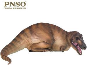 PNSO 1/35 Tyrannosaurus Rex Andrea Model Dinosaur T-Rex Collector Art Decor Gift