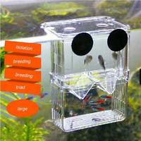 Acrylic Fish Tank Breeding Box Aquarium Double Guppies Hatching Incubator
