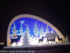 3d LED Arco de luces vidrio acrílico CON MADERA ANIMALES SALVAJES 66 x 34cm