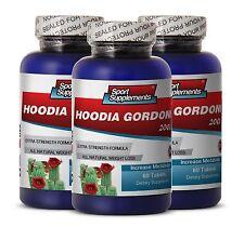 Super Fat Burner - Hoodia Gordonii Cactus 2000mg Healthy Blood Sugar Level 3B