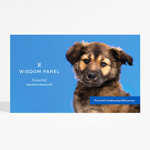 Wisdom Panel Dog DNA Breed and health Analysis -ESSENTIAL- New and improved!