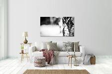 Wandtattoo Wandsticker Aufkleber Natur Grösse: 120 x 70 cm