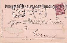 LUCCA - Domenico & Salvatore Landucci alla Banca d'Italia 1904