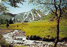 B51158 Le Puy de Sancy au printemps   france