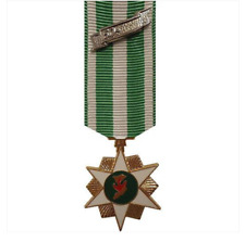 Vanguard (Mini) Miniature Medal: Vietnam Campaign