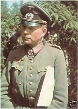 COLOR WWII  Photo German Officer in the Field  WW2 World War Two Wehrmacht