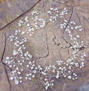 Silver Hair Vine crown bridal bridesmaids baby's breath Gypsophila Prom boho