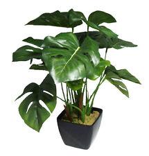 Philodendron dekopflanze en sobre olla/arte planta/32cm
