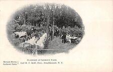 c.1905 Clambake at Lookout Farm Poughkeepsie NY post card Dutchess County