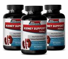 Urinary Tract Cleanse - Kidney Support 700mg - With  Turmeric Powder Pills 3B