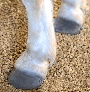 Flachs Pellets Kleintier Pferde Nager Leinen Einstreu Streu Antibakteriell 30 Kg