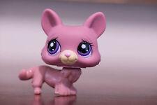 *Littlest Pet Shop* LPS #1533 Mauve Pink Corgi Puppy Dog w/ Purple Eyes