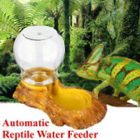Automatic Drinking Water Dispenser Dish Feeder Bowl for Pet Tortoise   -)