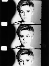 B&W PHOTO PORTRAIT A3 REPRINT OF EDIE SEDGWICK WARHOL STAR C.1965