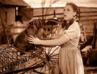 Wizard Of OZ  Dorothy With Toto Sepia 8x10 Glossy Photo