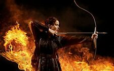 1/2 Sheet 11x17 Hunger Games Edible Cake Topper Frosting Birthday Party