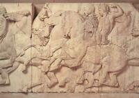 MARBLE HORSES of the RIDERS on PARTHENON SLAB XXXVIII POSTCARD BRITISH MUSEUM