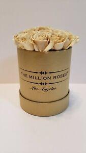 The Million Roses L.A. 20 Packed Cream Mini Roses, Logo Metallic Round Box