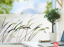Fensterfolie Gras Glasdekor Fenster Sichtschutzfolie Sandstrahloptik  g412