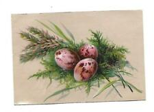 Pink Speckled Eggs Grasses Ferns No Advertising Vict Card c1880s