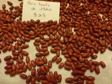 PROMO lot de 1000 perle EN BOIS ancienne de 1940 olive teinté rouge framboise 7€