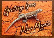 New Mexico Lizard postcard