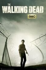 THE WALKING DEAD ~ RICK BROKEN FENCE 24x36 TV POSTER Zombie AMC Andrew Lincoln
