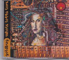 Goldbug-Whole Lotta Love cd maxi single