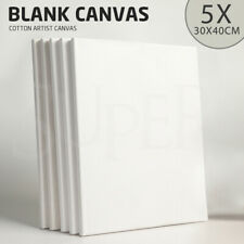 5x Artist Blank 30X40 Stretched Canvas Canvases Art White Range Oil Acrylic