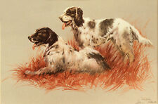 ENGLISH SETTER DOG LIMITED EDITION PRINT - by Arthur Spencer Roberts (1920-1997)