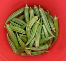 150 EMERALD GREEN VELVET OKRA Spineless Abelmoschus Esculentus Vegetable Seeds