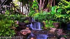 Bamboo Flute Zen Spa Music CD - Relaxation, Meditation, Massage, Beauty Therapy