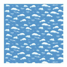 NEU Motiv-Fotokarton 49,5x68cm, Wolken
