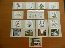 2009  PLANTS  PRESENTATION PACK (No427) + 15  PHQ CARDS  IN MINT CONDITION