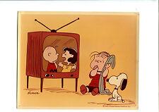 "scarce 1965 ""A Charlie Brown Christmas"" CBS TV Press Photo Color 9 x 7 Linus"