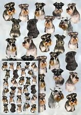 Miniature Schnauzer Gift Wrapping Paper By Starprint