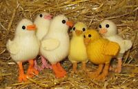 PRINTED INSTRUCTIONS-BABY CHICK CHICKS TOY ANIMAL KNITTING PATTERN