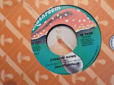 MUSHROOM 45 RECORD/ IAN MATHEWS /SHAKE IT/STEALIN' HOME/ EX+ VINYL