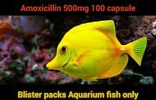 Aquarium fish Antibiotics A moxicillin 500mg 100 caps...