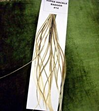 Premium Dry Fly Saddle Hackle Feathers ,Color: Golden Badger # 16