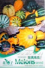 1 Pack Doll Pumpkin Seeds Organic Vegetables Seeds Nutrient Garden Plant Hot