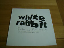 "White Rabbit-take me i'm yours.12"" chris difford jane birkin squeeze"