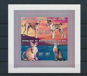 LO13715 Mali dogs pets animals cats imperf sheet MNH