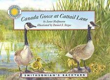 Canada Goose at Cattail Lane (Smithsonian Backyard) Janet Halfmann Paperback