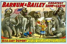 Vintage Lady Elephant Trainer Barnum Circus Carnival Poster Art Re-Print A4