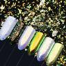 Chameleon Nail Art Glitter Sequins Neon Powder Dust Mirror Iridescent Pigment